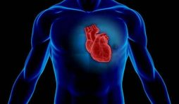 تضخم القلب Enlarged heart